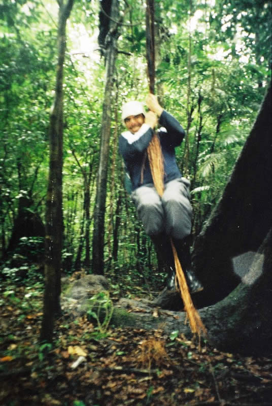 Swinging from a tree vine in the Amazon rainforest