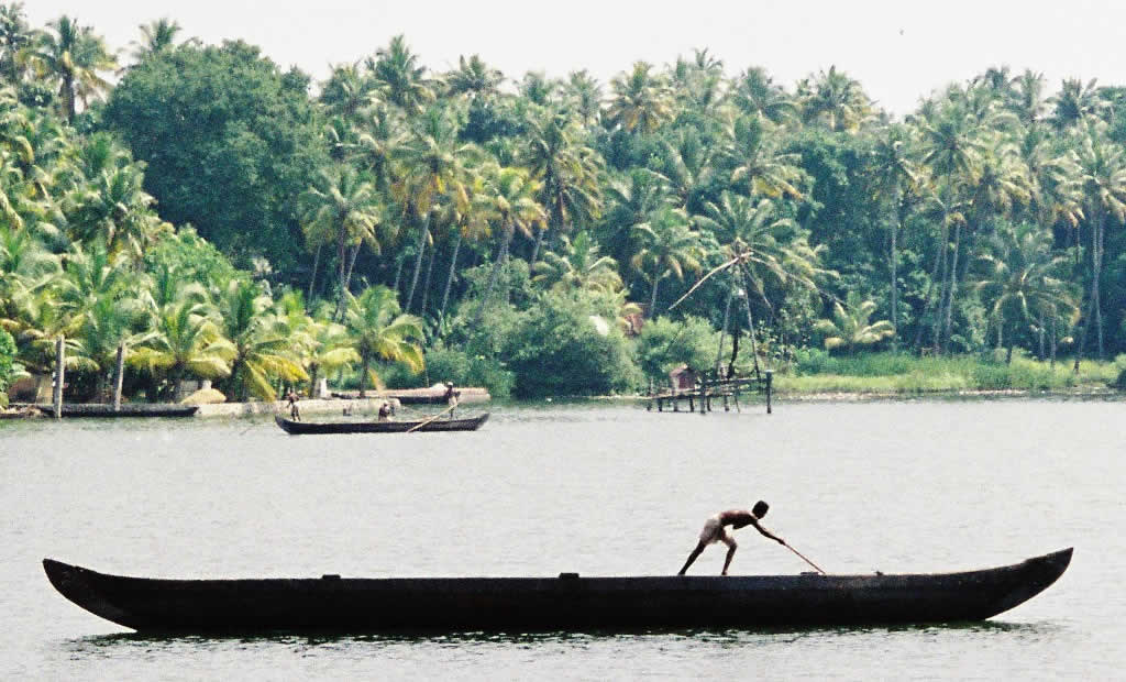 Local man poles his boat through the backwater near Alleppey, India