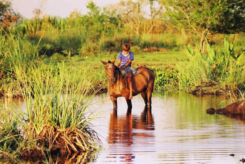 Local boy on horseback reflects in Argentina's Esteros del Iberá