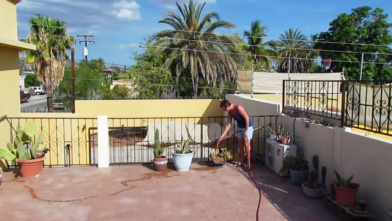 Watering plants at a house sit in Mexico