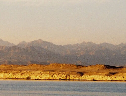 Diving In Dahab – Red Sea Adventures On The Sinai Peninsula