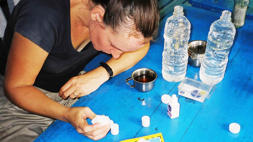 Diane treats water with a chlorine dioxide solution