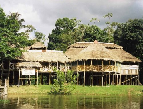 Welcome To The Jungle – Amazon Adventures On The Javari River