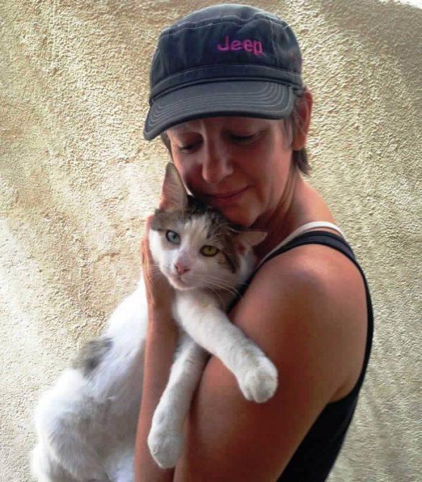Saving a stray cat