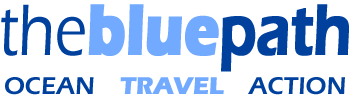The Blue Path Logo