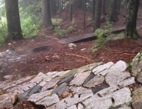 North Shore Riding – The Best Mountain Biking Trails In North Vancouver
